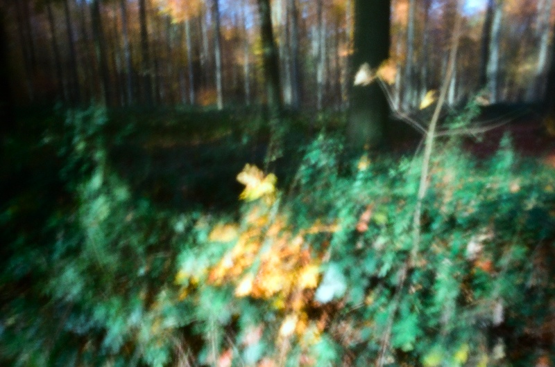 http://francoisvaxelaire.com/files/gimgs/9_01-1.jpg